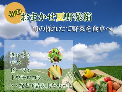 旬のおまかせ野菜箱Aセット  [送料別]