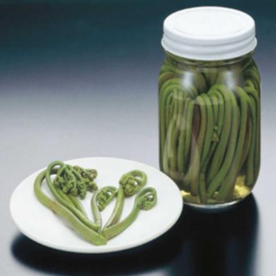 鉤わらび  P壜 70本入【常温】山菜 かぎわらび