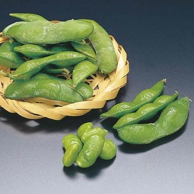 冷凍茶豆(塩味)[500g]/枝豆/解凍のみでOK/おつまみ