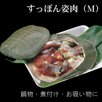 スッポン姿肉(M)/すっぽん/鍋物/椀物/煮物に