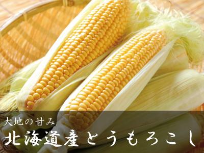 トウモロコシ(黄色)
