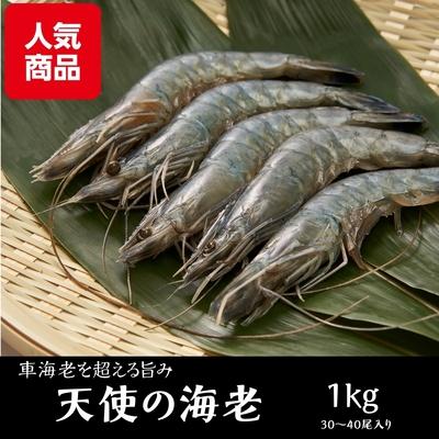 天使の海老 1kg(30/40)