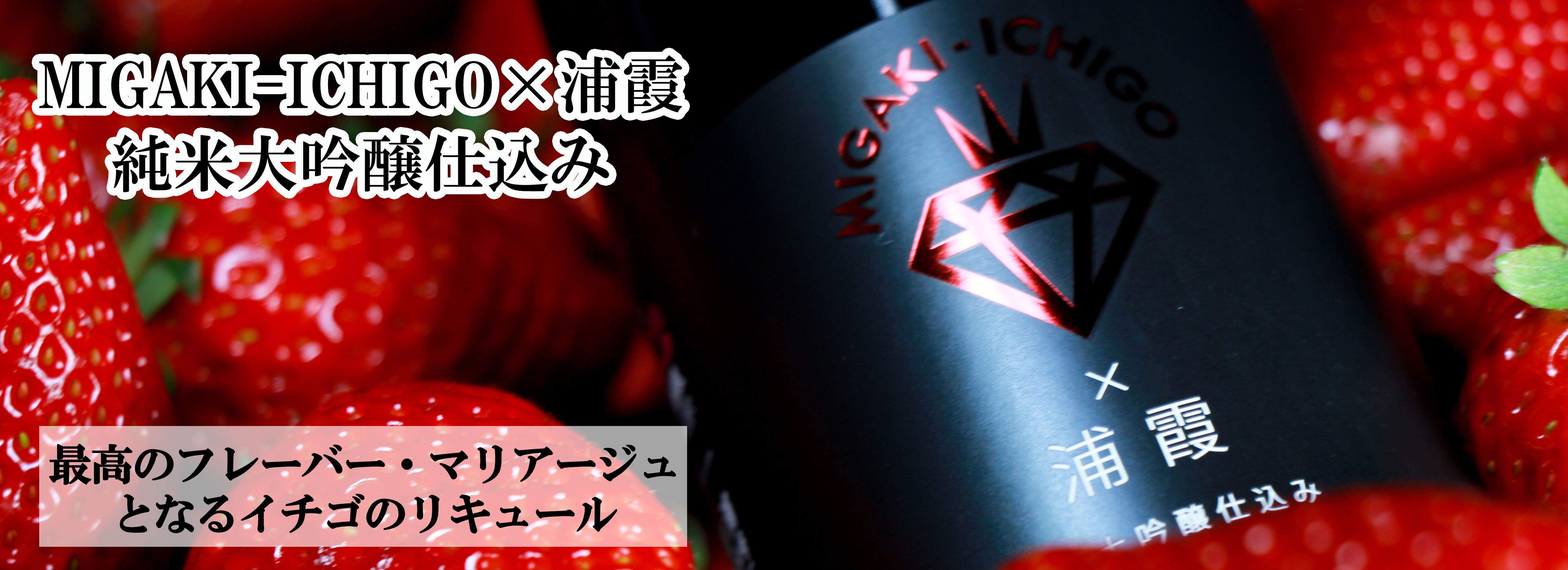 ギフトにおすすめ「MIGAKI-ICHIGO×浦霞 純米大吟醸仕込み」