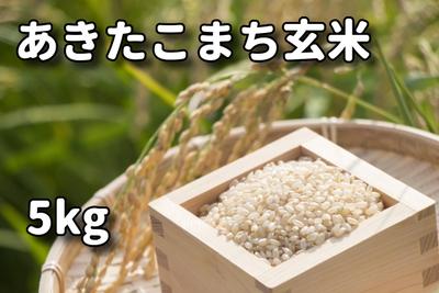 あきたこまち玄米5kg