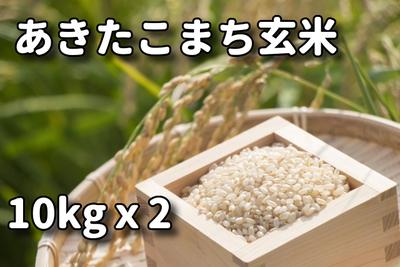 あきたこまち玄米10kx2
