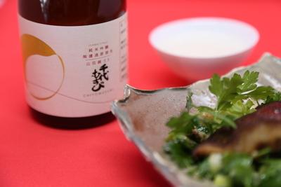 【完売御礼】鳥取、境港より 「千代むすび 初しぼり 純米吟醸」300ml(生)