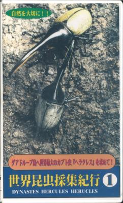 【中古】世界昆虫紀行1(VHS)