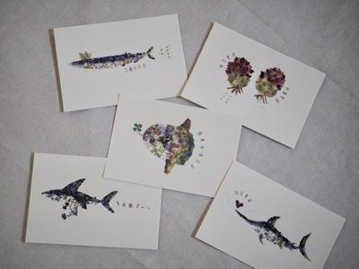 KESENNUMA ポストカード(5種類のお魚たち)5枚セット