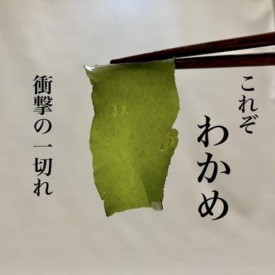 自家製カットわかめ『三陸The WAKAME 30g』