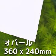 LUBLA - オパール 360 x 240mm