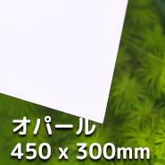 LUBLA - オパール 450 x 300mm