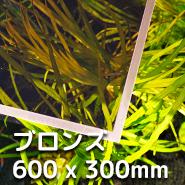 LUBLA - ブロンズ 600 x 300mm