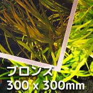 LUBLA - ブロンズ 300 x 300mm