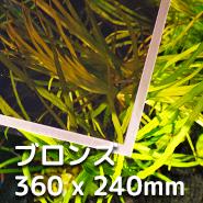 LUBLA - ブロンズ 360 x 240mm
