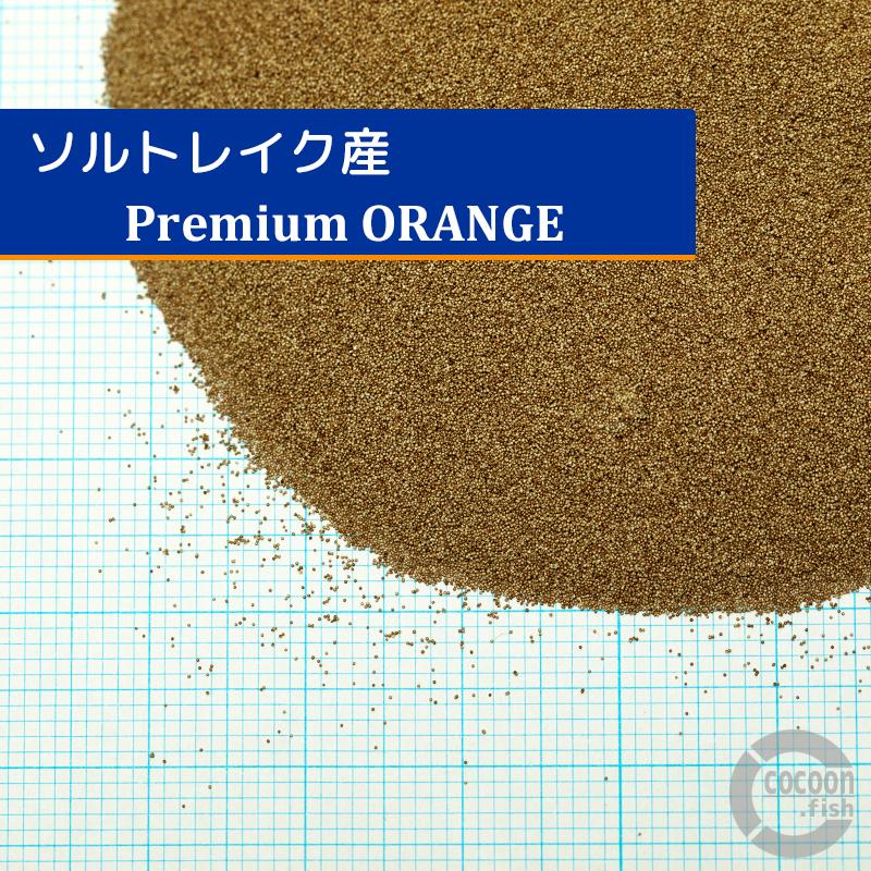 ブラインシュリンプエッグ ソルトレイク産プレミアムオレンジ