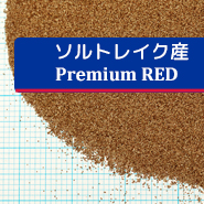 ブライン - ソルトレイク産 Premium RED 50g