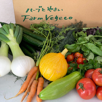 ファームベジコ 季節の野菜詰め合わせ レモンオリーブオイルセット【冷蔵便】