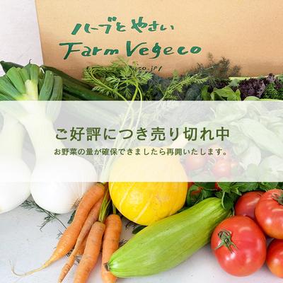 ファームベジコ 季節の野菜詰め合わせ 心平(白)セット【冷蔵便】