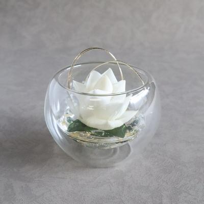玻璃花 harika