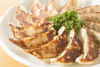 気仙沼ホルモン餃子 1袋8個入り(2袋)