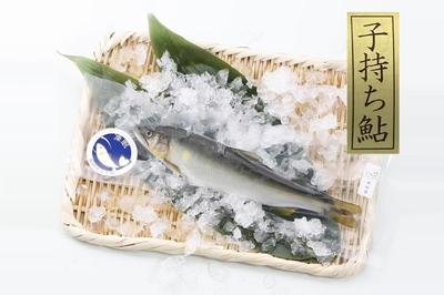 紀州仕立て鮎 子持ち 凍眠(冷凍)(10尾入)