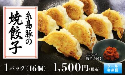 糸島豚の焼餃子 16個入り