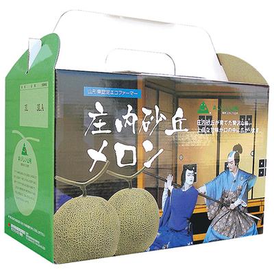【期間限定】【7月3日頃より出荷開始】甘えん坊(パンナメロン) つる付 2玉 化粧箱入