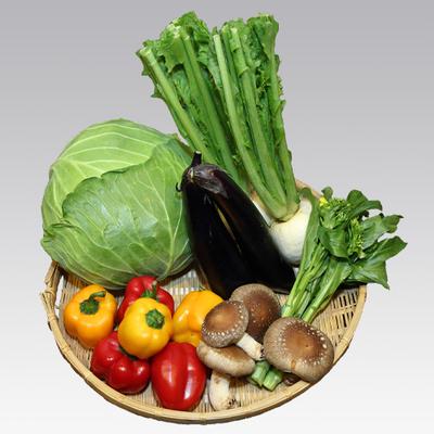 庄内の野菜セット