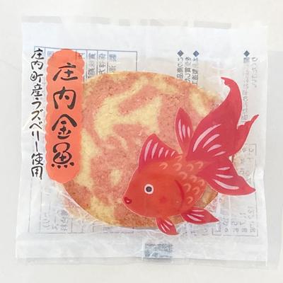 ひまわり園 庄内金魚クッキー 1枚