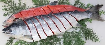 カナダ産天然紅鮭 一尾切身〔中塩〕送料込