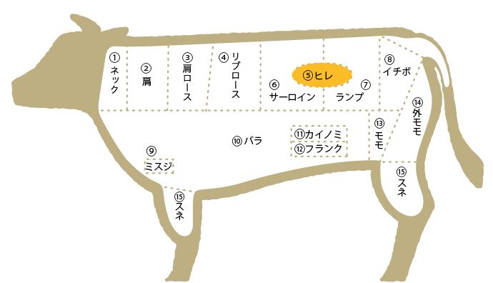 松阪牛 部位図鑑 ヒレ