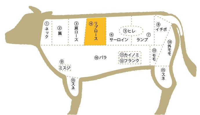 松阪牛 部位図鑑 リブロース