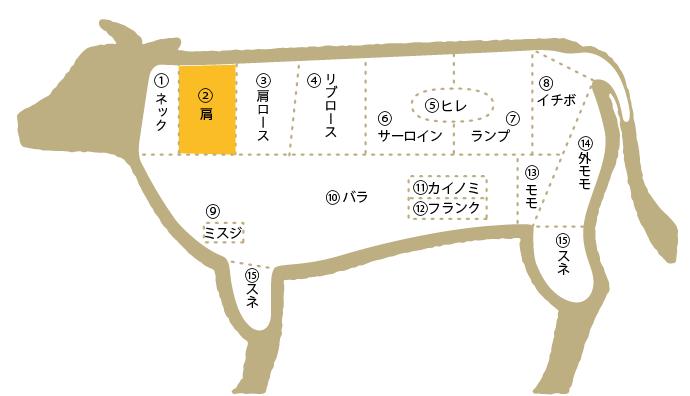 松阪牛 部位図鑑 肩ロース