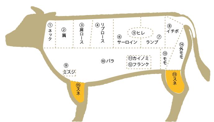 松阪肉 部位図鑑 スネ