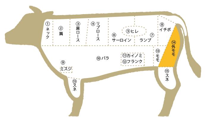 松阪肉 部位図鑑 外モモ