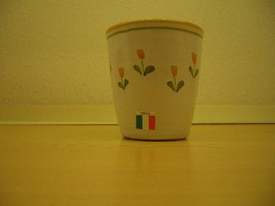 LAMAS Italy フリーカップ