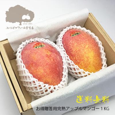 レギュラーアップルマンゴー1Kg