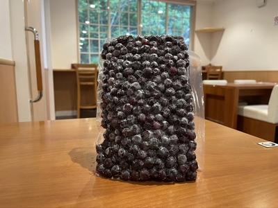 【紫色の宝石】冷凍ブルーベリー 計1kg(500g×2袋)