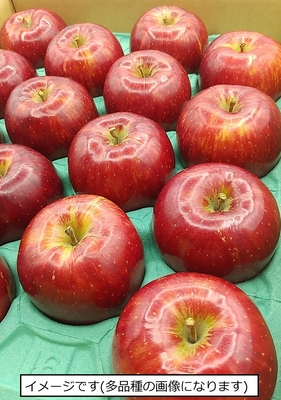 築城果樹園のりんご2種詰め合わせ(レッドゴールド&ひめかみ)5kgセット