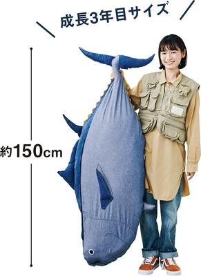 成長3年目サイズ!デニムで作った近大マグロの布団収納クッションカバー(メス:オーシャンライトブルー)