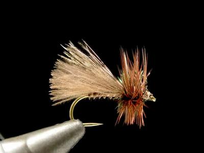 Renn Harrop ヘンリーズフォークカディス brown #14