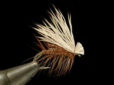 umpqua エルクヘアカディス brown