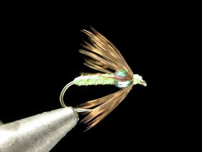 axisco マルチカラービーズ・ソフトハックル spring green #14