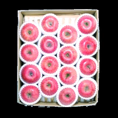 ふじりんご 10kg箱 28玉~36玉入