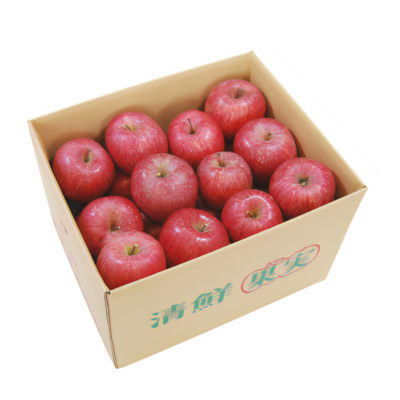 ご家庭用 ふじりんご 10kg