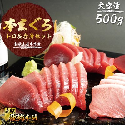 本まぐろトロ&赤身セット500g 和歌山県串本産