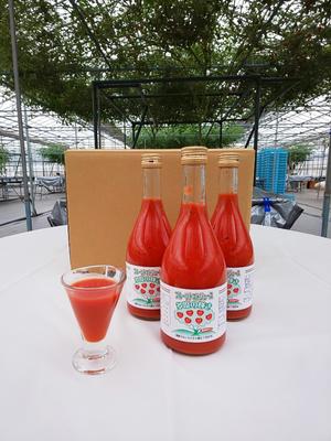フルーツトマトジュース 多度の輝き 500㎖ 12本入