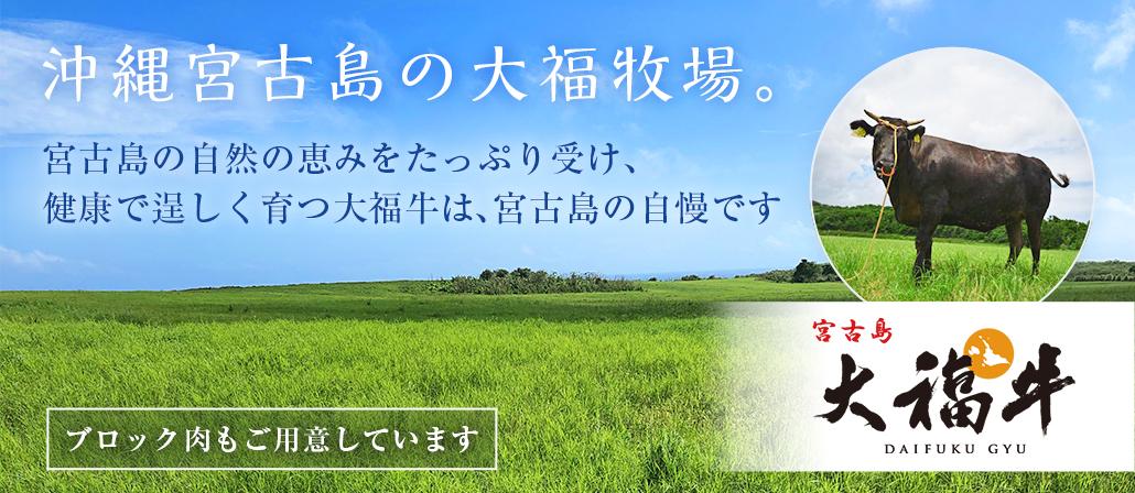 沖縄宮古島・大福牧場で生産される黒毛和牛の「大福牛」はA4・A5ランクの希少牛。ホテルオリジナルブラ