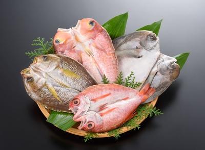 (13)山口県産近海魚 極
