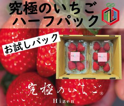 【究極のいちご Hizen】ハーフパック〜春バージョン〜(2パック入り)【送料込み】